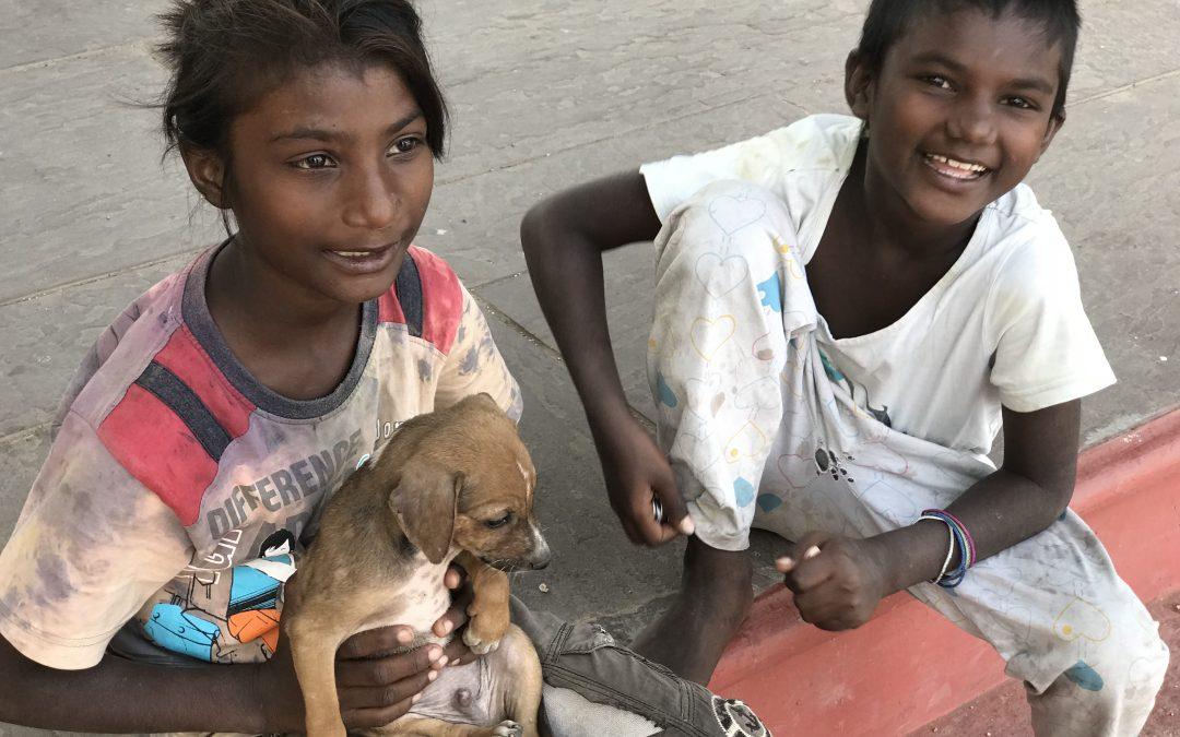 Kampfgeist in Indien – Wieso Wohlstand und Armut manchmal sehr nah beieinander liegen